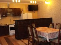 one-room apartment for daily rent Mirgorod